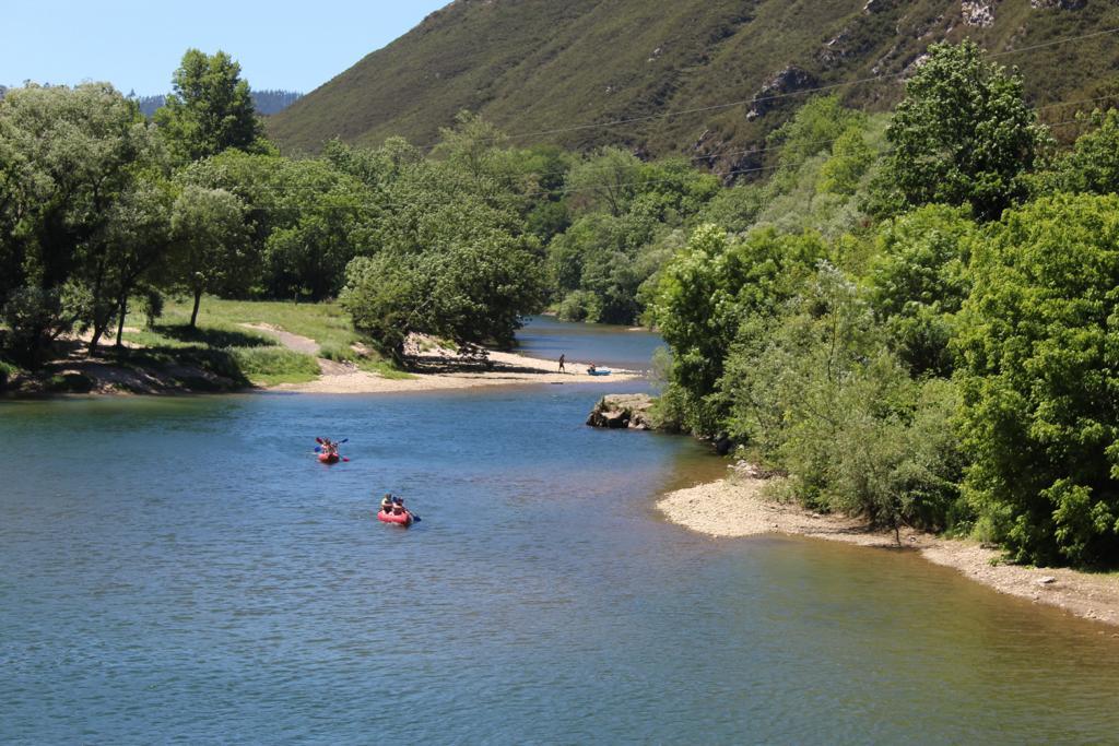 Varias canoas haciendo la bajada del río Sella